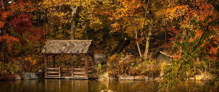 Perché dovete limitare le vostre passeggiate ed escursioni solo al periodo primaverile ed estivo? Camminare in autunno è altrettanto bello ed emozionante.