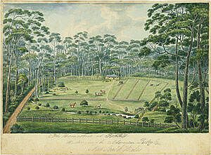 Raby Farm where my convict great great uncle was assigned in 1826.