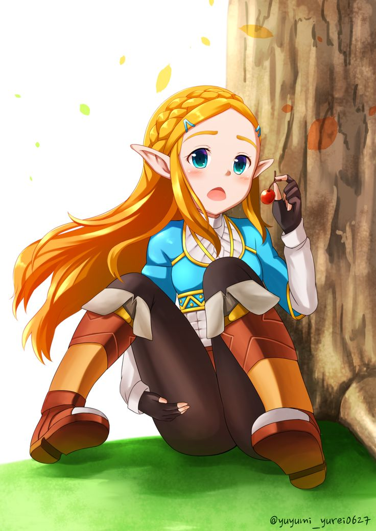 the legend of zelda porn