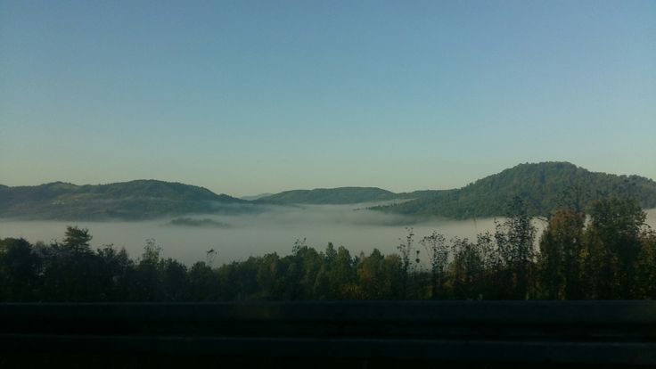 #fog #foglake #ViseudeSus #MaramuresCounty