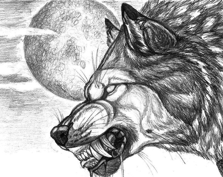 blackwolf6666 by sioSIN Wolf drawing, Werewolf art, Wolf art