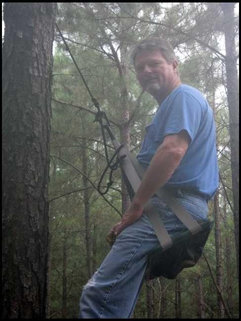Tree Saddle