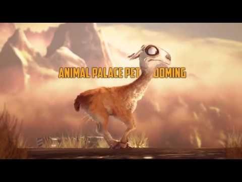 Animal Palace - YouTube
