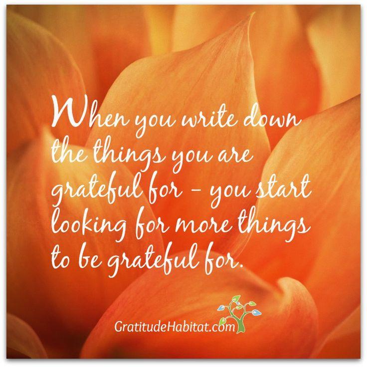 8a9a37cc04d00fdf082fe43c9614a026--practice-gratitude-attitude-of-gratitude.jpg
