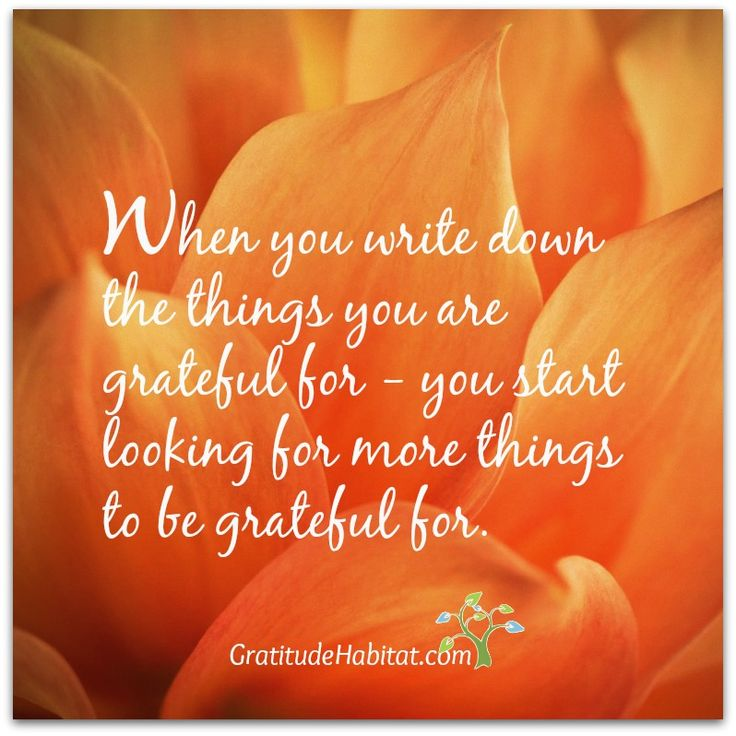 Write down what you are grateful for and you'll find more and more to be grateful for. Visit us at: www.GratitudeHabitat.com #grateful #gratitude