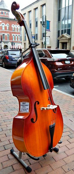 783 best upright bass images on pinterest double bass instruments and bass guitars. Black Bedroom Furniture Sets. Home Design Ideas