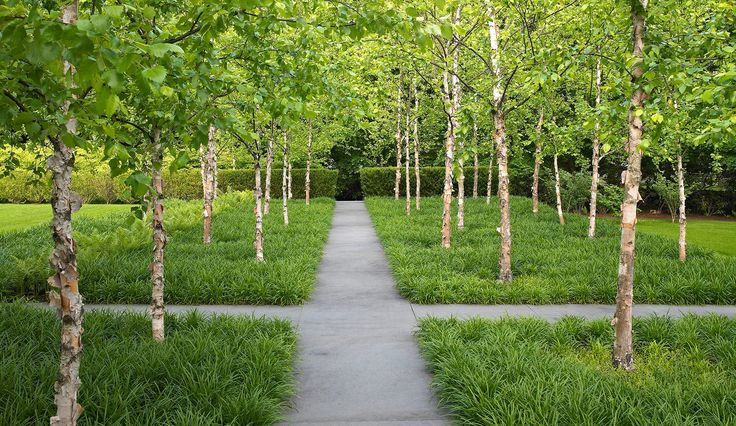 stephen stimson associates landscape architects