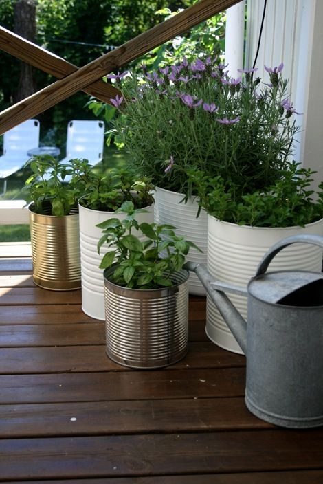 coffee cans as planters. perfect! (if i drank coffee and had old coffee cans)