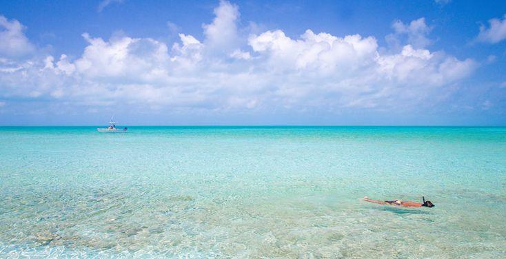 Bahamas sailing scuba diving deep sea sport fishing for Deep sea fishing bahamas