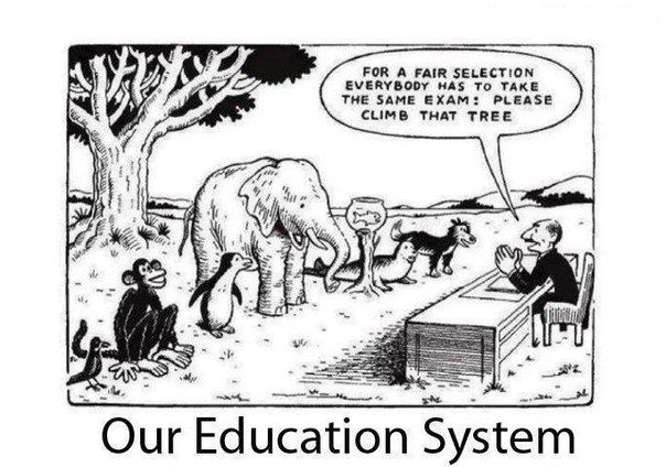 For a fair selection everybody has to take the same exam.  Please climb that tree ...Are our schools creating people with learning disorders who will always feel that they are not good enough?