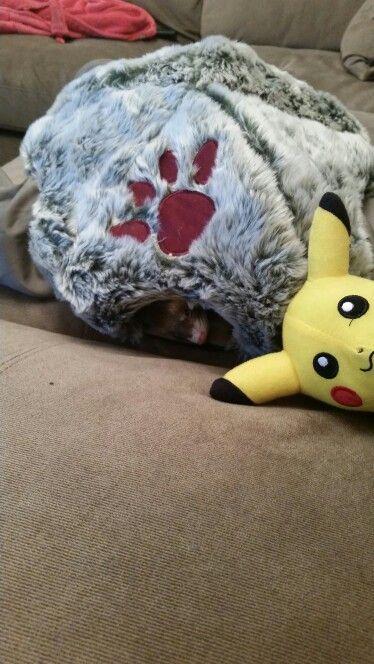 I'm going to sleep now Mummy!