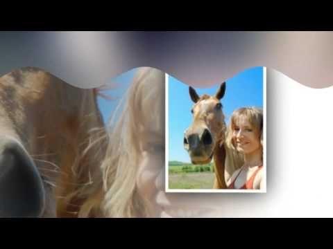 Девы и лошади ( Песня о Любви )
