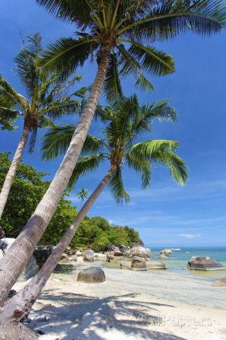 Lamai Beach, Koh Samui, Thailand