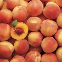 Hale Haven Peach from Stark Bro's. Good for canning. Dwarf variety!