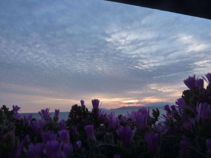 Paarse zonsondergang.