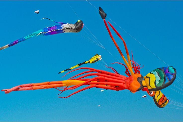 Depuis le 18 avril, le ciel de Berck-sur-Mer est envahi de cerfs-volants de mille couleurs. Jusqu'au 26 avril prochain, la ville du Pas-de-Calais accueille les 29ème Rencontres internationales de cerfs-volants.
