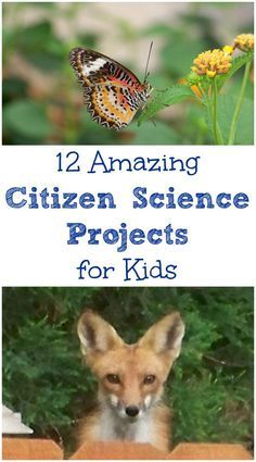 Real Life science experiments and projects that kids can contribute to -- awesome STEM learning!