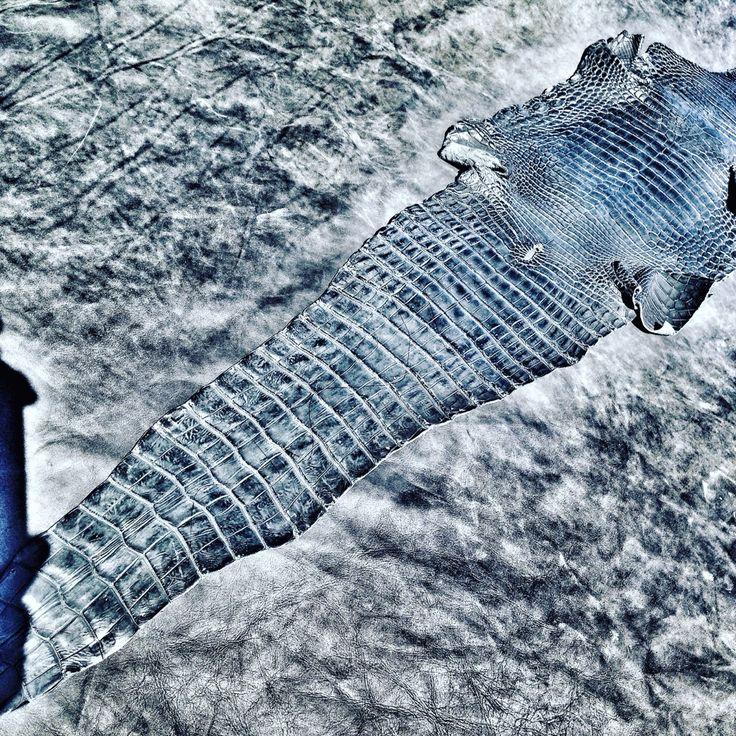 Pure crocodile belly work in progress making a sneaker @lust_be_original