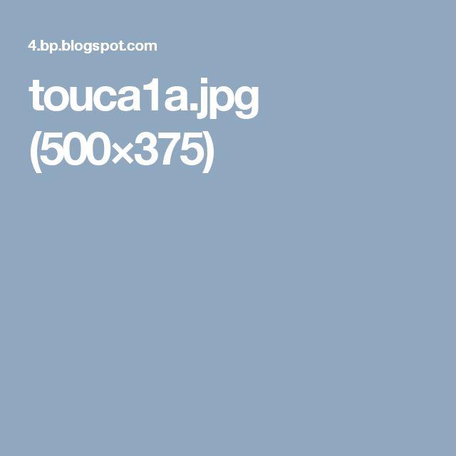 touca1a.jpg (500×375)