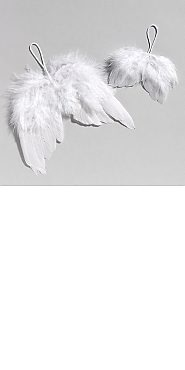 Angel Wing ornaments as favors to remember Olivia for her bday. Garden Ridge usually has these.