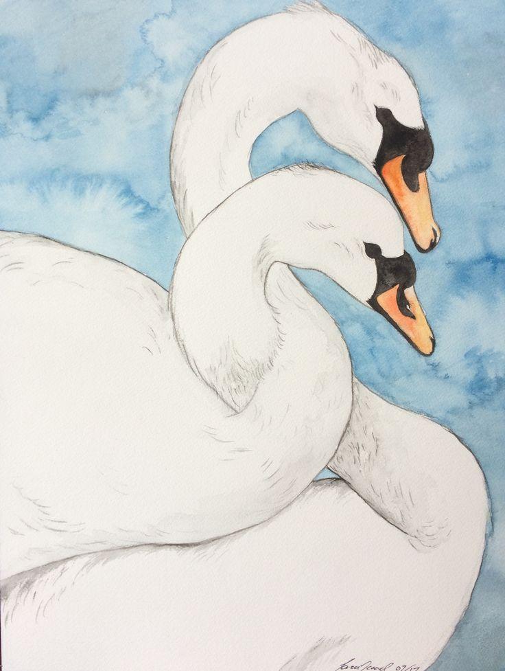 Swans. ~ Sara Noad