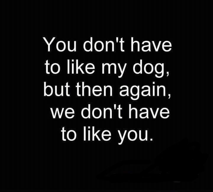 english bulldog quotes | More quotes following soon, this topic will be regularly updated with ...