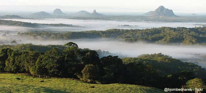 Maleny QLD ~ Glass House Mountains in the background.