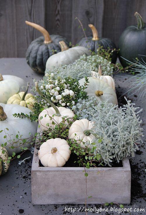 Fall decor, pumpkins, table piece. I love fall, white pumpkins