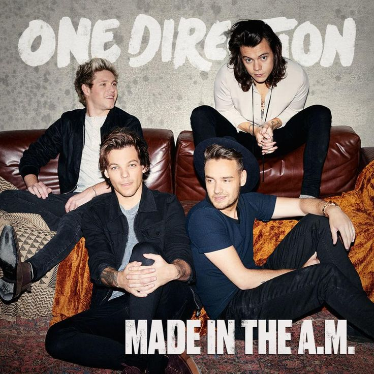 one direction made in the AM album -she wants deluxe edition