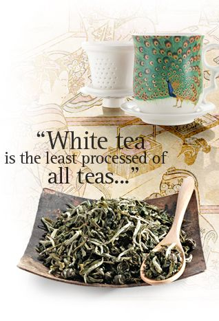 White tea, originally discovered in China, is known to contain antioxidants that make it an ideal complement to a healthy diet. Available for purchase from naked Stables' private tea field, or if you wish, be the first to hand pick your own tea leaves when the harvest is ready next spring. - naked Stables Private Reserve, Moganshan, China www.nakedretreats.cn