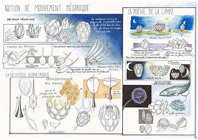 Lisa Ingrassia Book: Etude de cas - BLOOM
