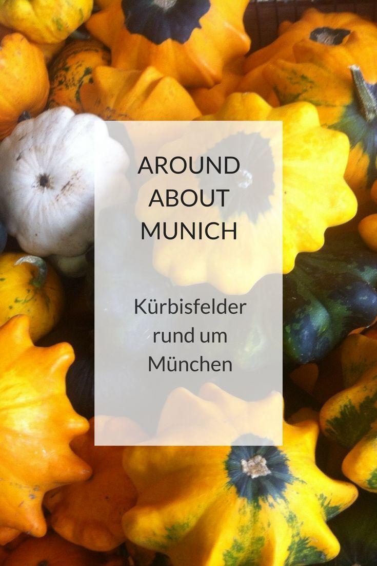 Kurbishofe Und Felder Rund Um Munchen Mit Bildern Munchen Ausflug Unternehmungen