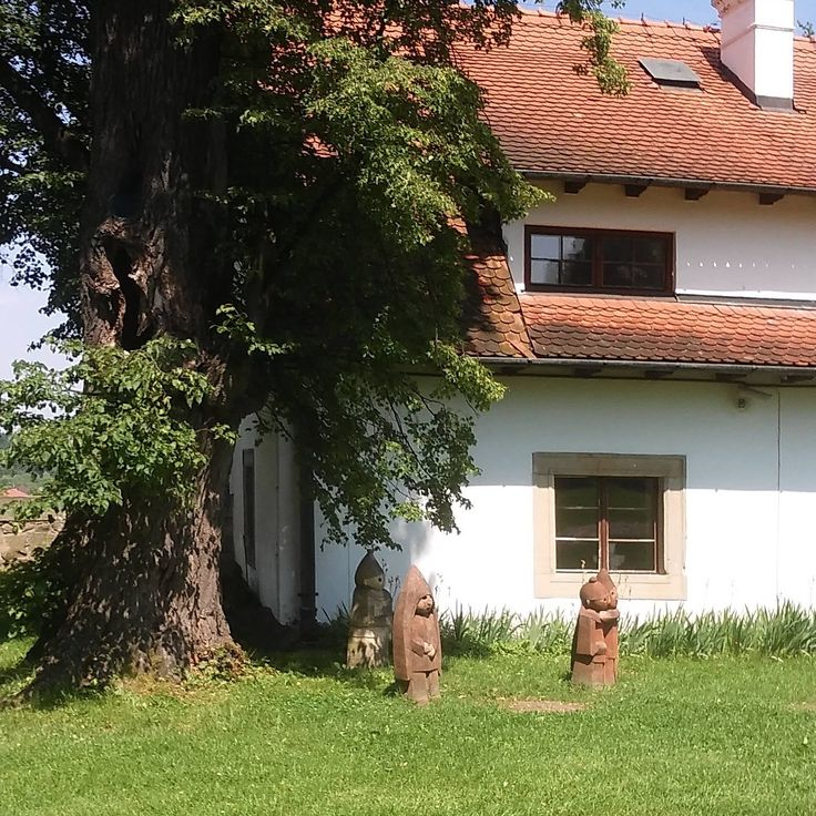 Zamek w Wisniczu  castle//travel in Poland