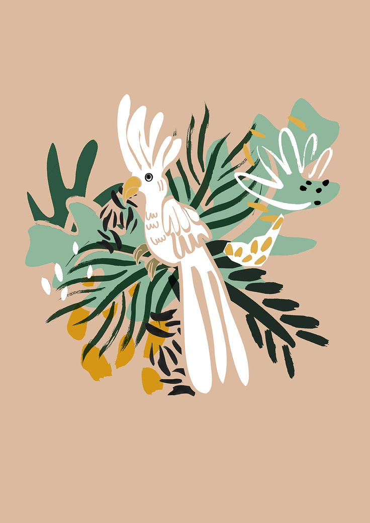 Dora Szentmihalyi: Jungle bird Illustration http://doraszentmihalyi.wix.com/doraszentmihalyi