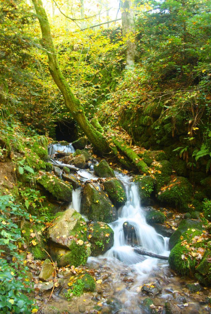 Geroldsauer Wasserfall in Autumn. Photo by Alessandra Basso. Source Flickr.com