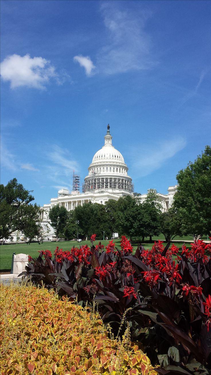 Washington D.C. during the summer