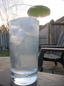 Sugar Free Summer Drinks.  Like Sprite or 7Up but better!