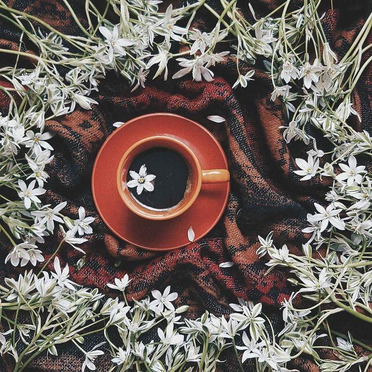сегодня один из тех самых дней когда даже моему кофе нужен кофе.  хорошего дня!   #vscomorning#coffee#vscoua#vscoukraine#artofvisuals#visualsoflife#peoplescreative#makemoments#catchthebeauty#liveauthentic#flowersinmyhead#springtime#moodyvibe#vsco#vscoonly by vi.kosto