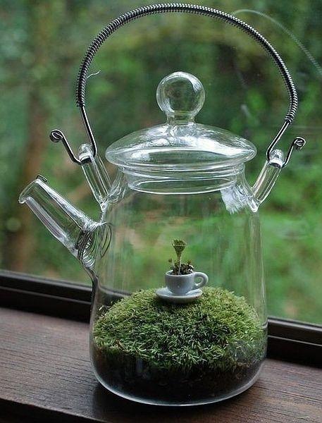 Massor av trädgårdar i miniatyr.