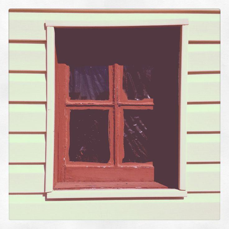 Garage window