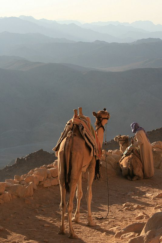 Camel path on Mount Sinai, South Sinai, Egypt. www.dahabvillas.com