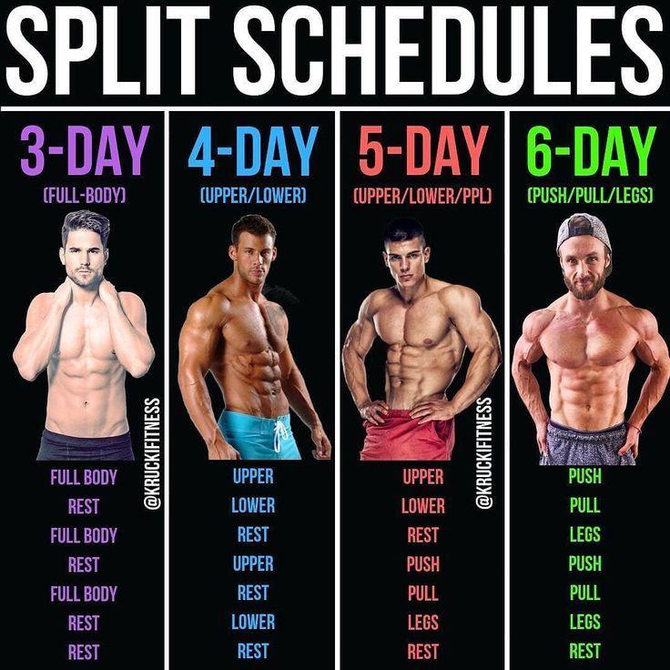 Workout Muskelaufbau