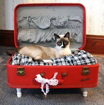 Upcycled suitcase into pet bed #DIY #decoracion #vintage #maletas antiguas #repurposed #upcycled
