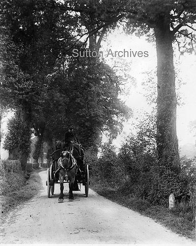 Love Lane, St Helier