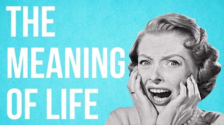 Dit is de zin van het leven in één minuut - Het Nieuwsblad: http://www.nieuwsblad.be/cnt/dmf20150707_01766781?utm_source=facebook