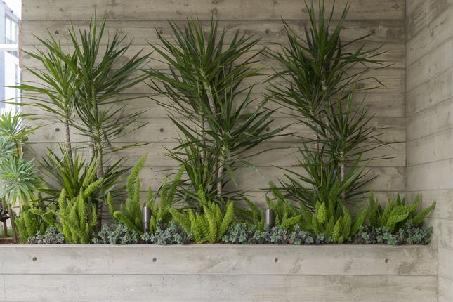 Sort of like the concrete.  But, I don't like the plants...  Michael Lee Architects