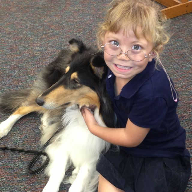 Smiles spread across the faces of students in Noel Gamel's special education class at Cathedral City High School when three collies — Amos, Lana and