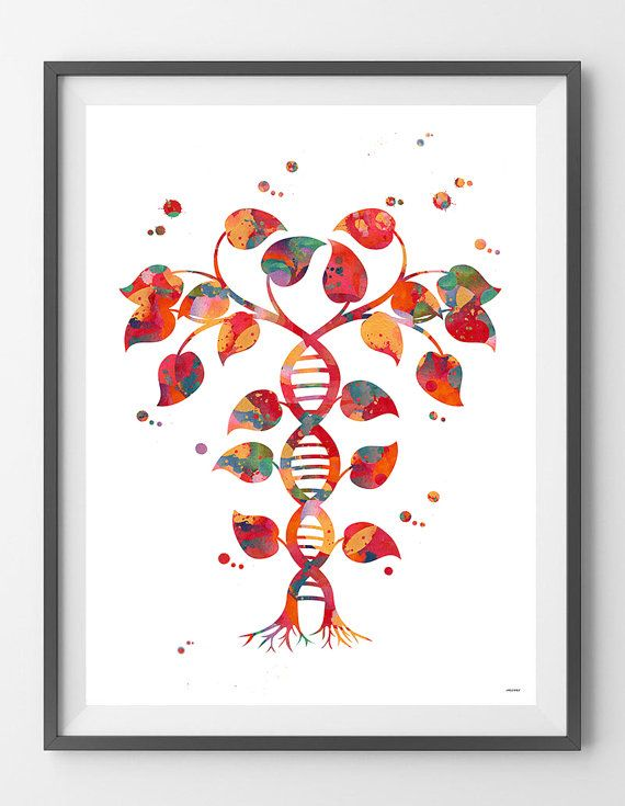 DNA tree of life watercolor print Dna double helix abstract