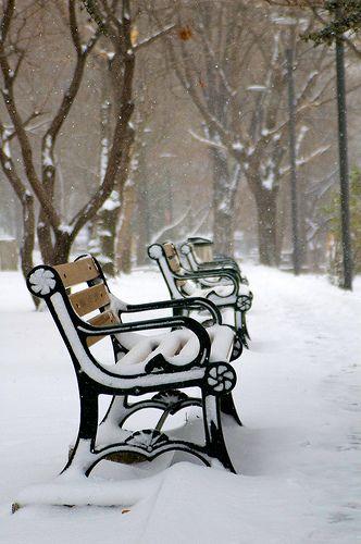 Ankara #snow #white