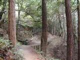 Hiking with Kids in the San Francisco Bay Area